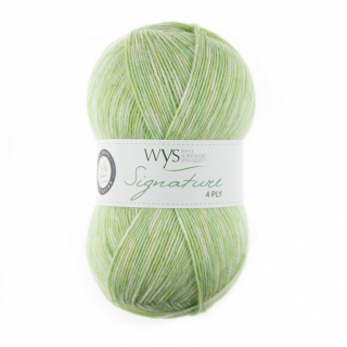 Signature 4ply Gypsophila
