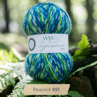 Signature 4Ply Peacock